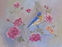 Blue Bird In Roses Fine Art Print