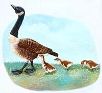 Mother Goose Fine Art Print