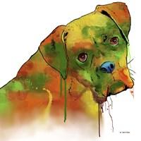 Boxer 2 Fine Art Print