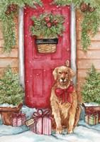 Golden At Christmas Door Fine Art Print
