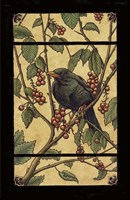 Apple Raven Fine Art Print