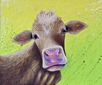 Jersey Cow Fine Art Print