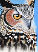 Great Horned Owl Eye Fine Art Print