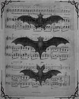 Vintage Bats 1 Fine Art Print