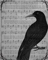 Vintage Crow Fine Art Print