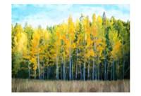 Trees 1 Fine Art Print