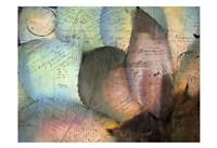 Carte Postale Succulent Fine Art Print