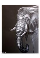 Elephant Grounds 1 Fine Art Print