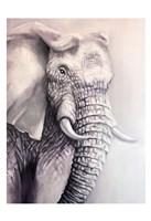 Elephant Trail 1 Fine Art Print