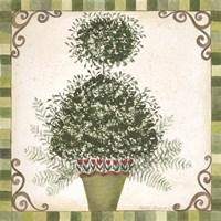 Topiary I Fine Art Print