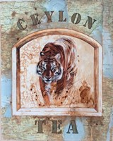 Ceylon Tea Fine Art Print