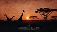 Vintage Sunset with Giraffes in Serengeti National Park, Africa Fine Art Print