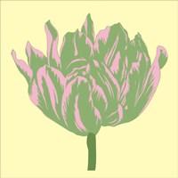 Soho Tulip IV Fine Art Print