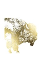 Gold Foil Buffalo Fine Art Print