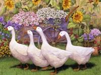 Garden March III Fine Art Print