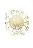 Gold Foil Ocean Gems II Fine Art Print