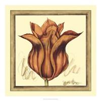 Tulip Study VI Fine Art Print