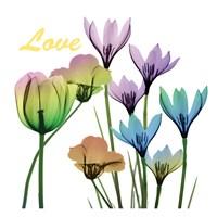 Floral Rainbow Love Fine Art Print