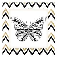 Zig Zag Butterfly 2 Fine Art Print