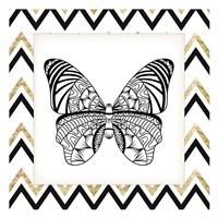 Zig Zag Butterfly 3 Fine Art Print