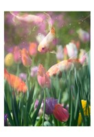 Tulip Swim A Fine Art Print
