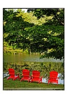 A Family Of Adirondak Chairs Fine Art Print