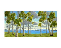 Afternoon at Birch Beach Fine Art Print