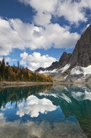 Floe Lake Reflection I Fine Art Print