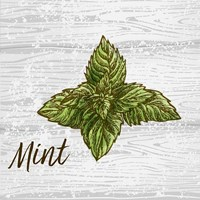 Mint on Wood Fine Art Print