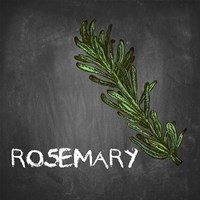 Rosemary on Chalkboard Fine Art Print