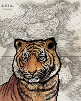 Asian Tiger Fine Art Print