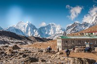 Trekkers and yaks in Lobuche on a trail to Mt Everest Fine Art Print