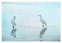 White Cranes Fine Art Print