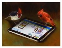 Angry Birds Fine Art Print