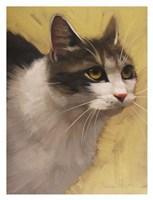 Derby Cat Fine Art Print