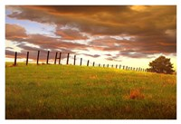 Fenceline, South Dakota Fine Art Print