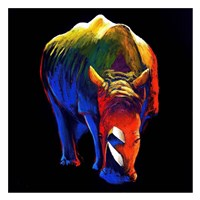 The Rhino Fine Art Print