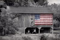 Patriotic Farm I Fine Art Print
