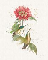 Colorful Hummingbirds I Fine Art Print