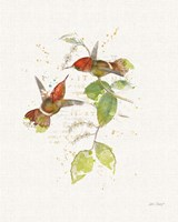 Colorful Hummingbirds II Fine Art Print
