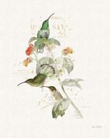 Colorful Hummingbirds III Fine Art Print