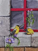 Gold Finches Fine Art Print