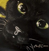 Cat's Eyes Fine Art Print