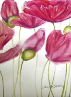 Pink Poppies Fine Art Print