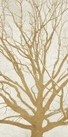 Golden Tree II Fine Art Print