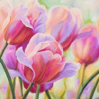 Tulips in Wonderland I Fine Art Print