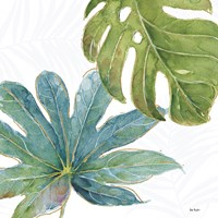 Tropical Blush VII Fine Art Print