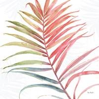 Tropical Blush VI Fine Art Print