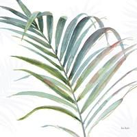 Tropical Blush V Fine Art Print