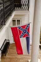 Mississippi Mississippi state flag Fine Art Print